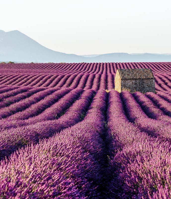 Provence Gezi Notları: Aix-en-Provence, mon amour!